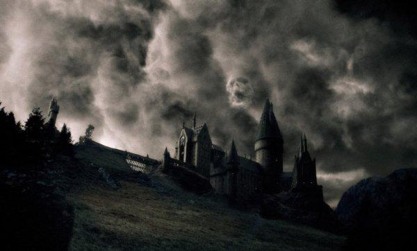Это новый Гарри Поттер. На кого он мечтает быть похожим? На Гражданина Кейна?