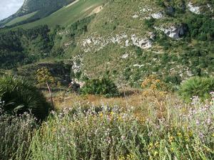 Сицилия, Седжеста