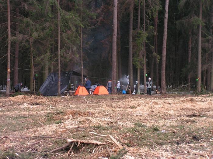 Жуковский цаговский лес вырубка палаточный лагерь