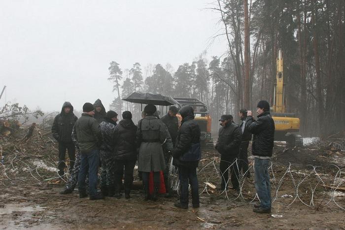 Жуковский цаговский лес вырубка колючая проволока