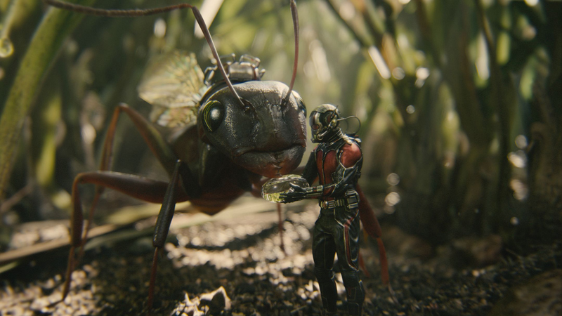 Человек-муравей кадры Ant-Man stills