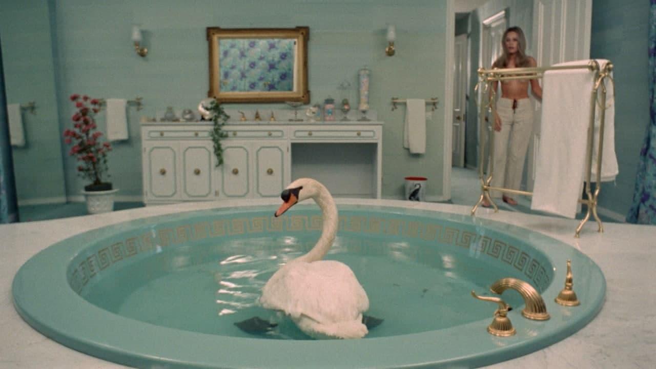 Лебедь в ванне Лисица с бархатным хвостом